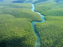 amazonie